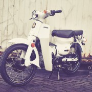 Super-White-2